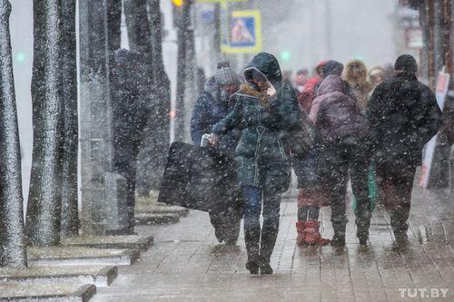 Белорусские таможенники изъяли более 15 тысяч единиц незаконно перемещаемых автозапчастей