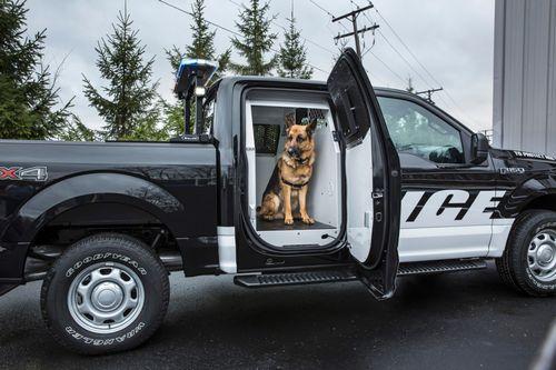 Ford представил полицейский пикап f-150 special service vehicle