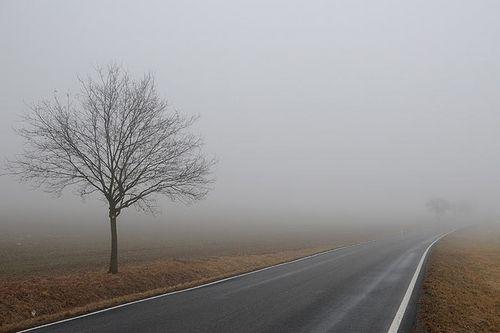 Гаи предупреждает: внимание! туман!