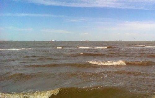 Российские экологи проследят зауглублением украиной дна азовского моря - «транспорт»