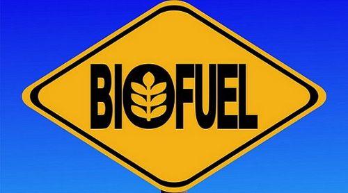 Замена бензину: биотопливо